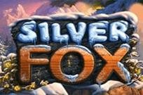 Играть в клубе Вулкан Silver Fox