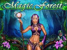 Magic Forest от Playson – азартный автомат на деньги с демо-игрой